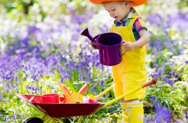 7 Dicas Para Jardim Adequado Para Crianças