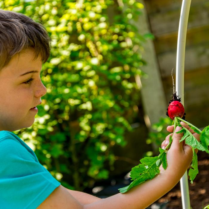 7 Dicas Para Tornar Seu Jardim Adequado Para Criancas 8 - 7 Dicas Para Jardim Adequado Para Crianças