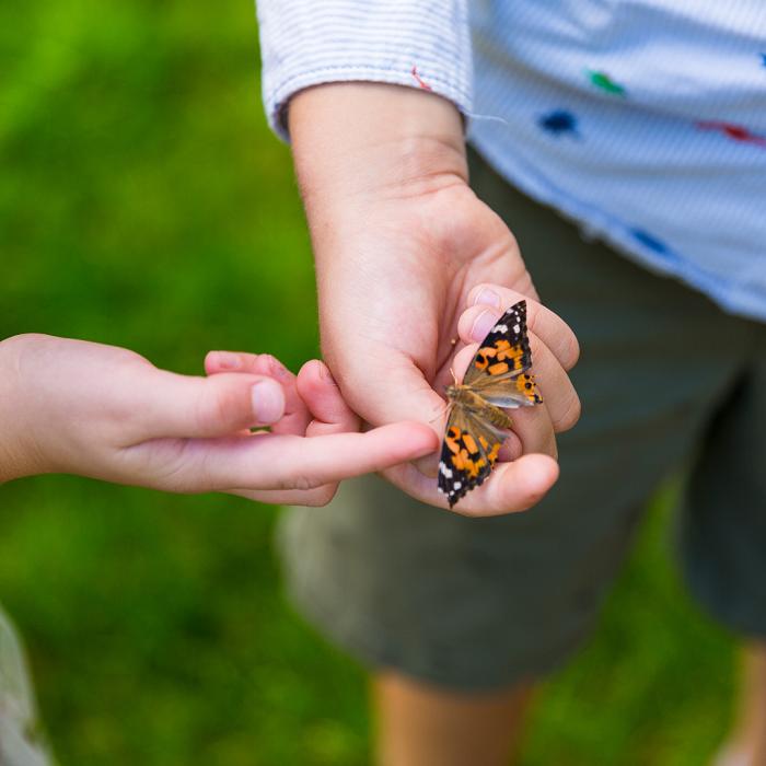 7 Dicas Para Tornar Seu Jardim Adequado Para Criancas 9 - 7 Dicas Para Jardim Adequado Para Crianças