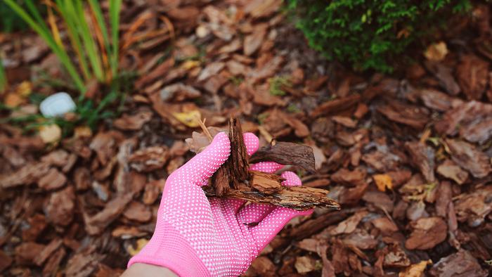 Mulching Conheca 6 Palhinhas Vegetais - MULCHING: Conheça 6 Palhinhas Vegetais
