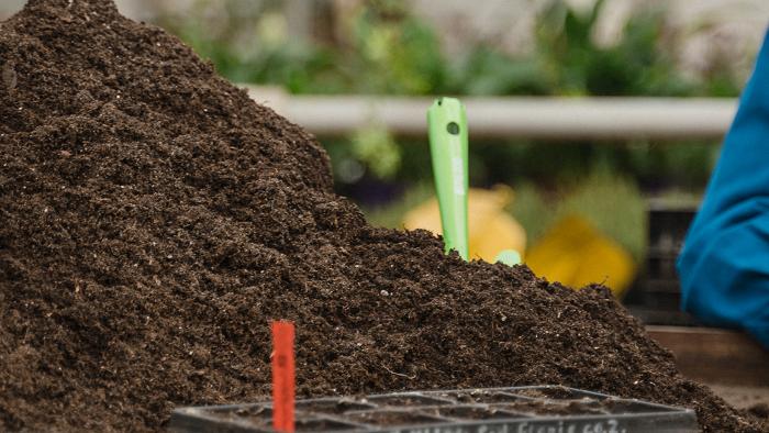 Mulching Conheca 6 Palhinhas Vegetais4 - MULCHING: Conheça 6 Palhinhas Vegetais